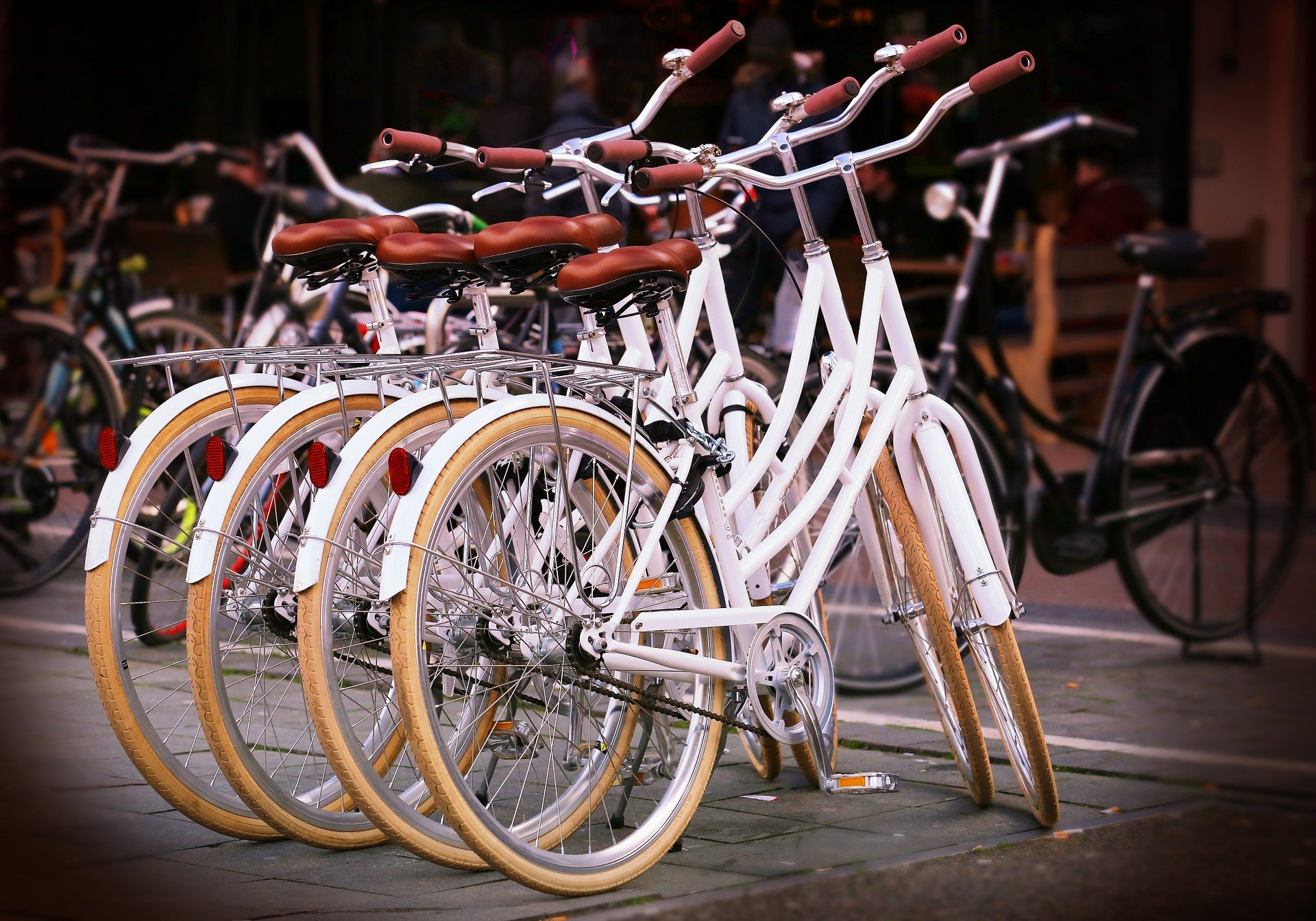 bicycles-737190_1920 (2)